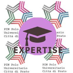 pin-expertise